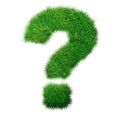 domande e risposte arredamento giardino