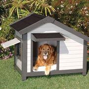 casetta per cane