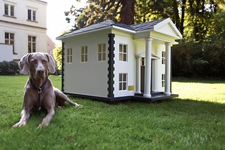 casetta per cani