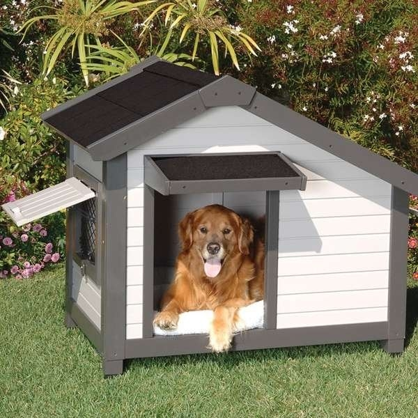 Casette per cani casette da giardino casette per cani - Giardino per cani ...