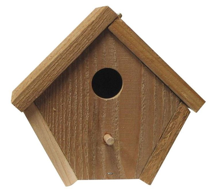 Casetta semplice per uccellini selvatici