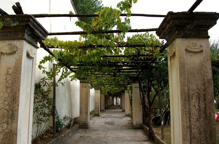 Costruire un pergolato pergole e tettoie da giardino for Costruire un mazzo di portico