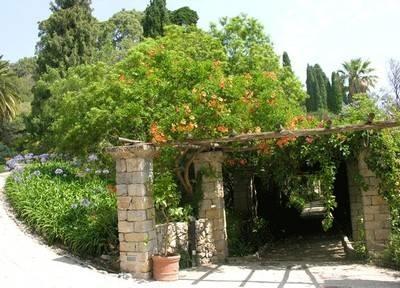 Pergolati da giardino pergole e tettoie da giardino for Giardino piastrellato