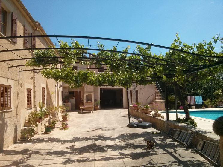 ... ferro - pergole e tettoie da giardino - Tipologie di pergole di ferro