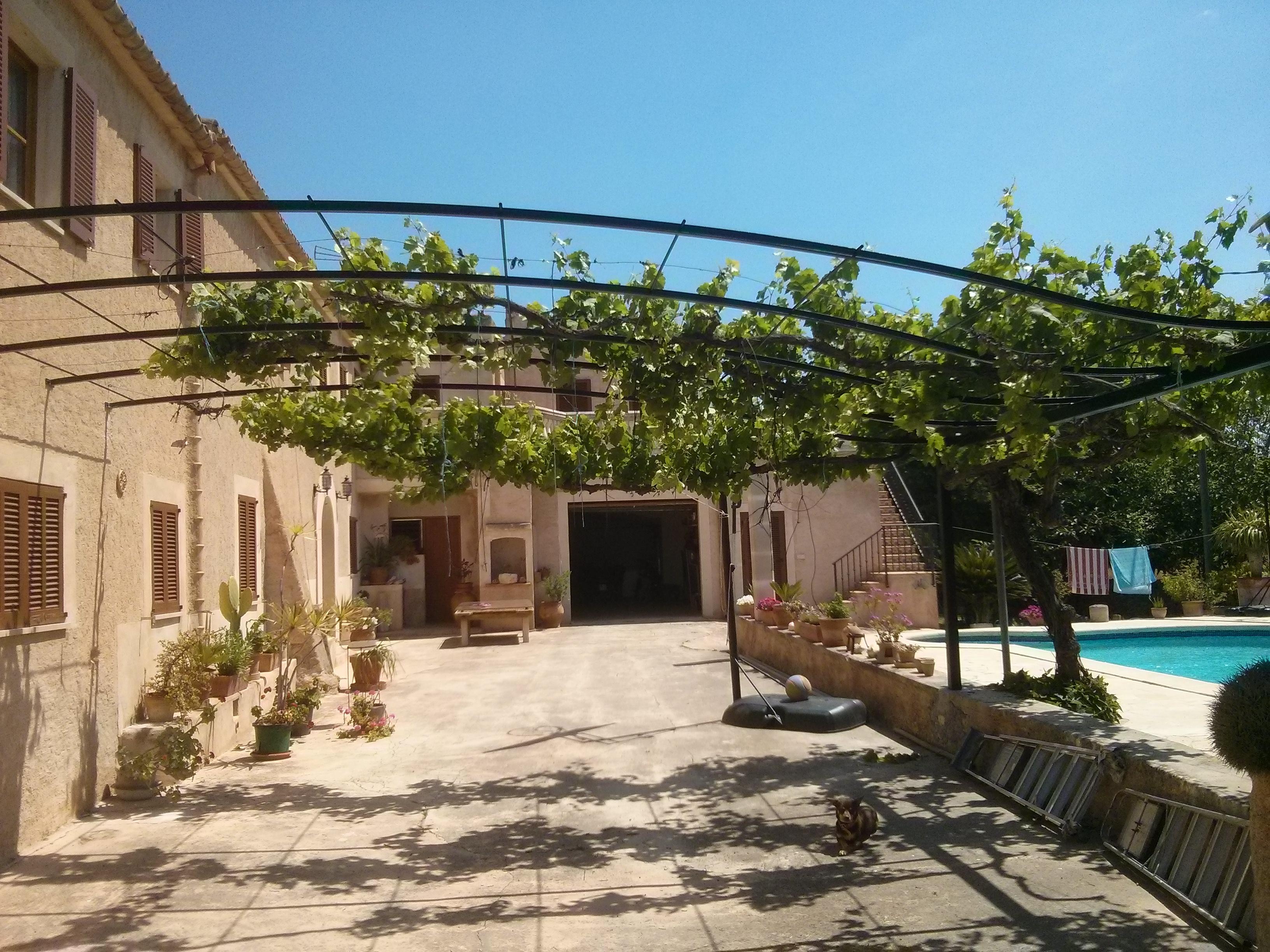 Pergole in ferro pergole e tettoie da giardino for Pergola addossata ferro