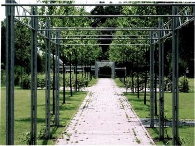 Pergole pergole e tettoie da giardino come realizzare - Pergole da giardino ...
