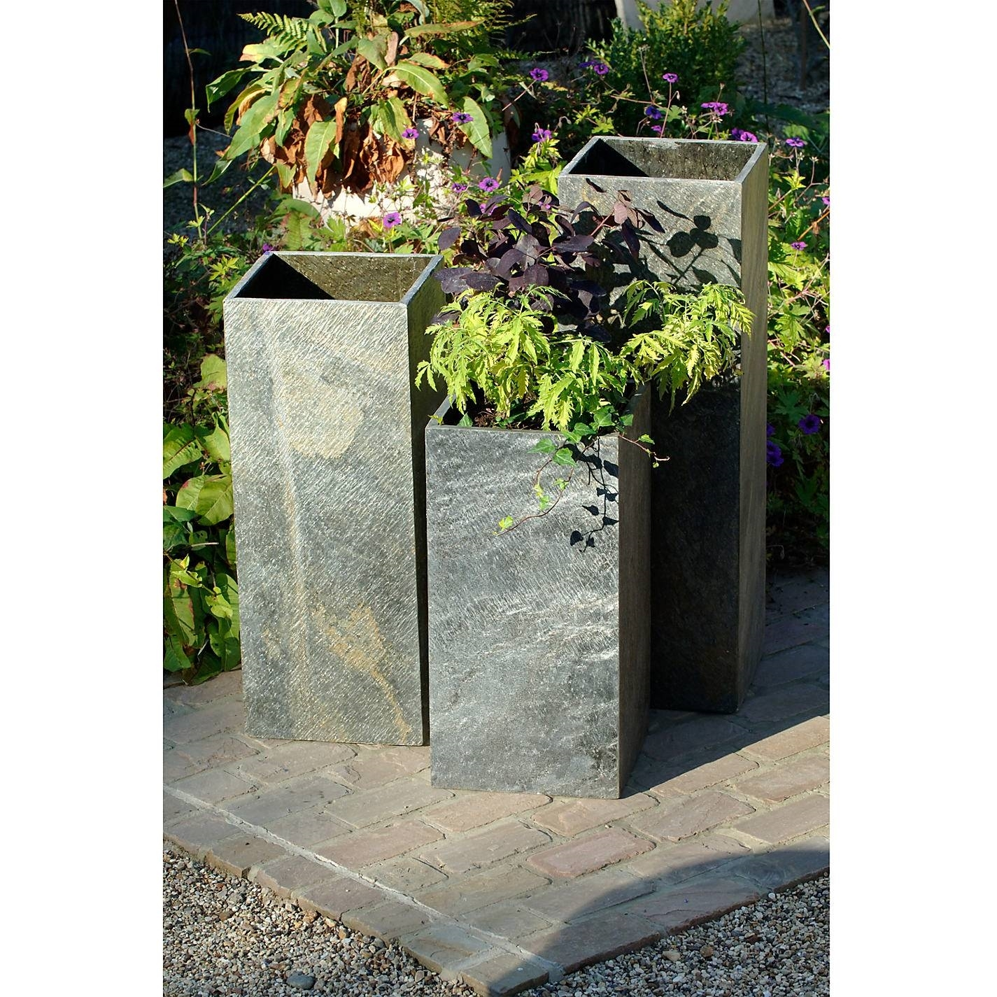 Contenitore per piante vasi e fioriere contenitore per - Piante sempreverdi per terrazzi ...