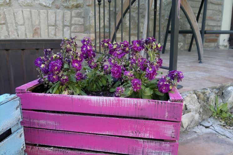 Colorata fioriera in legno