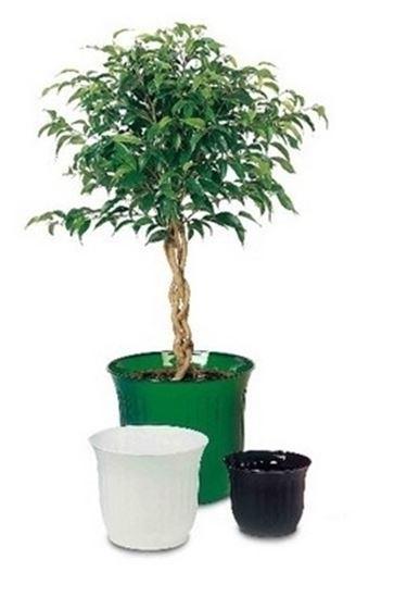Fioriere in plastica rotazionale vasi e fioriere - Vasi in giardino ...