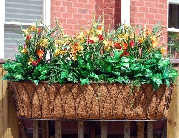 Fioriere per esterni vasi e fioriere fioriere esterne - Piante fiorite invernali da esterno ...