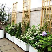 Terrazzo con fioriere