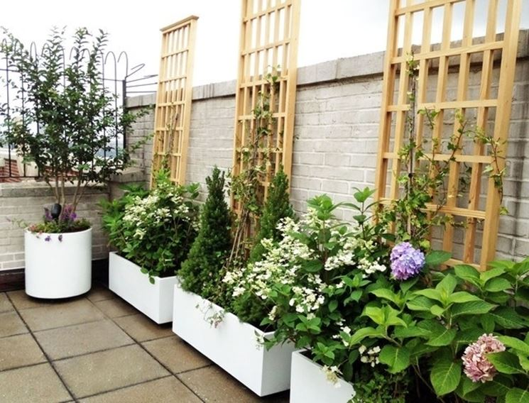 Fioriere per terrazzi vasi e fioriere fioriere per - Piante sempreverdi per terrazzi ...