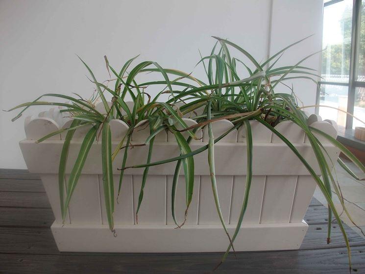 Fioriere pvc vasi e fioriere fioriere in pvc for Vasi in cotto prezzi