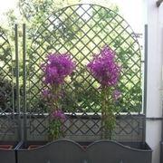 fioriera da giardino