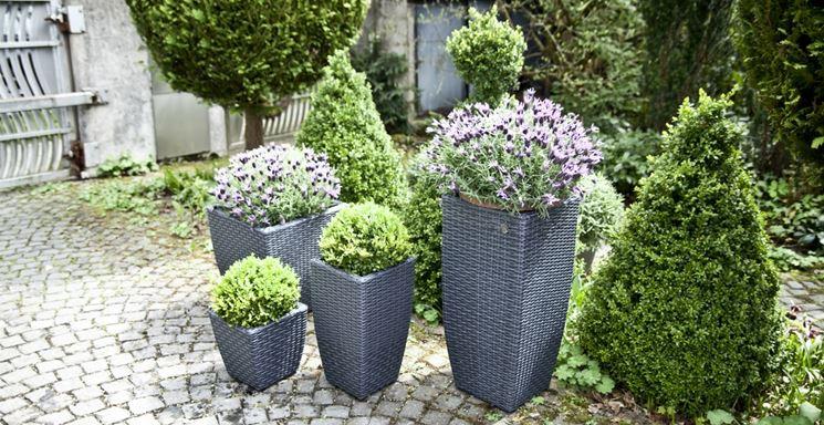 Vasi in cemento vasi e fioriere caratteristiche dei for Vasi da giardino in plastica