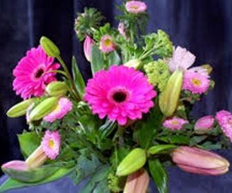 Fiori - Immagini di fiori tedeschi ...
