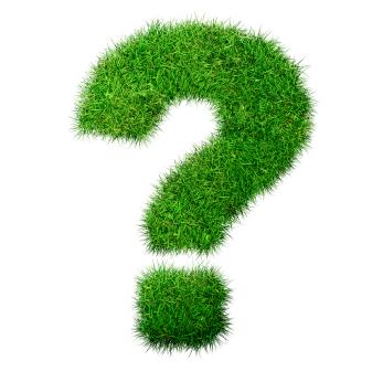 Q & Garden