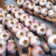 prodotti con aglio