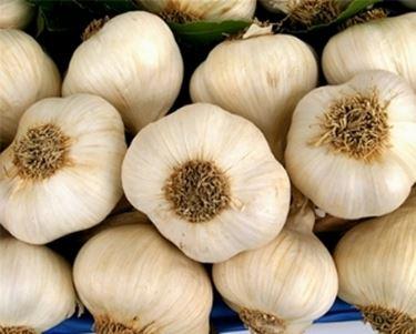 prodotti con aglio2