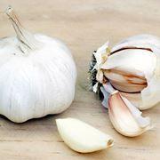 spicchio aglio