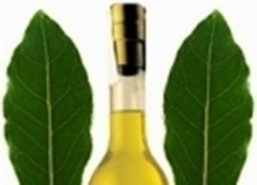 liquore di alloro 2