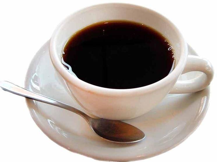 caff� di cicoria