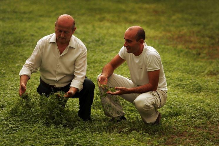 Gin-pent Ambrogio papà e figlio