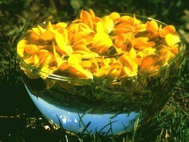 I fiori vengono raccolti, messi in acqua ed esposti al sole per qualche ora. All'acqua così ottenuta viene poi aggiunto del Brandy come conservante.