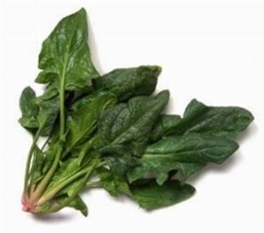 spinaci2