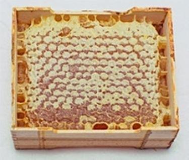 produzione miele2