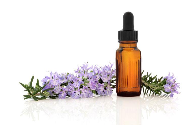 Foglie, fiori ed olio di rosmarino