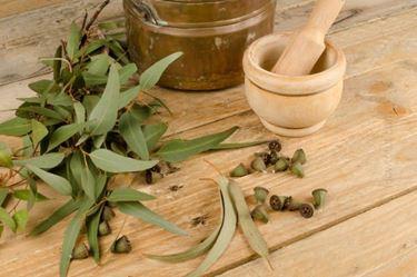 Suffumigi a base di olio essenziale di eucalipto