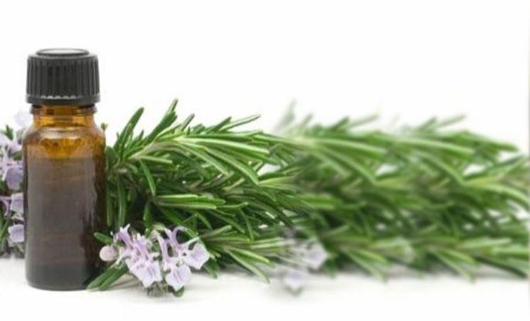 Boccetta di olio di eucalipto