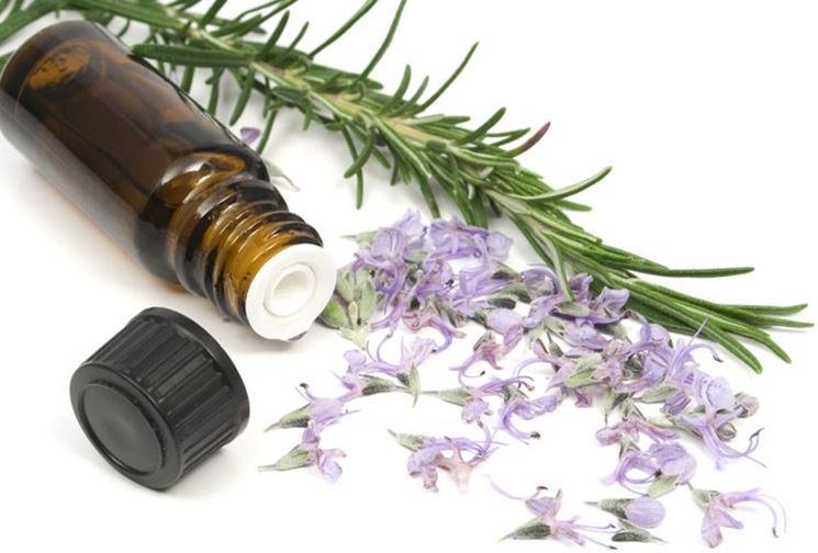 Usi dell'olio essenziale di origano