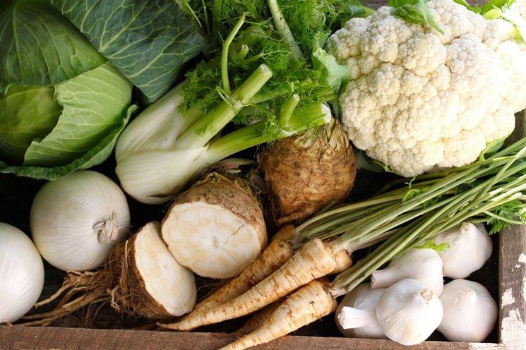 Scelta di verdure bianche