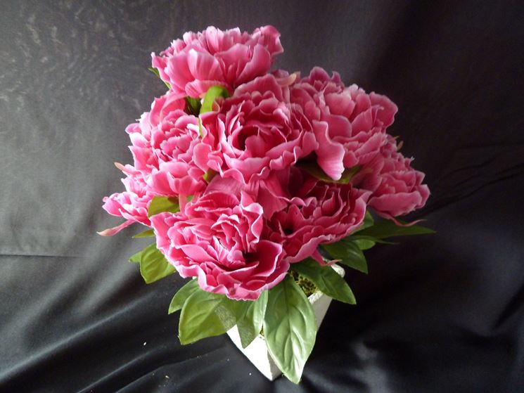 peonie rosa finte