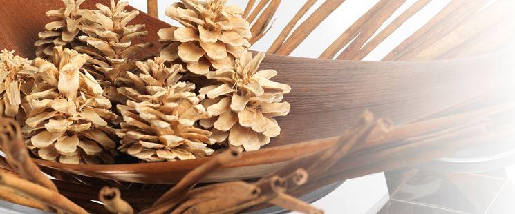 Esempio di fiori secchi
