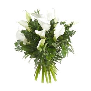 Fiori per matrimonio domande e risposte fiori for Giardinaggio e fiori
