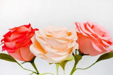 Rose giganti di carta crespa