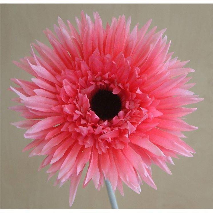 Gerbere di carta crespa rosa