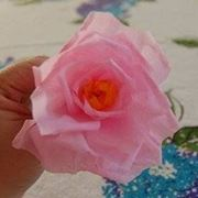 fiori carta velina