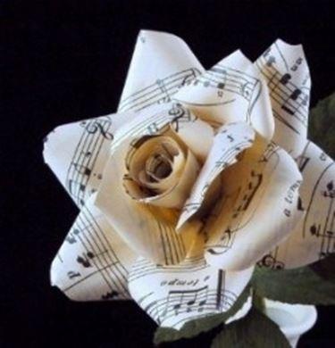 La nostra rosa di carta