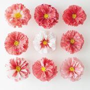 fiori di carta crespa facili