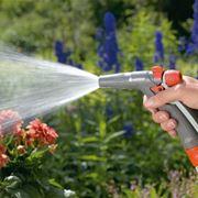 Irrigazione fiori orientali