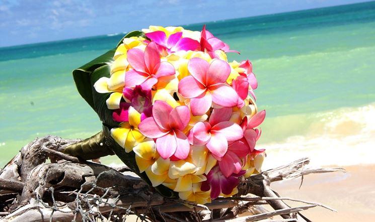 Bouquet di fiori tropicali