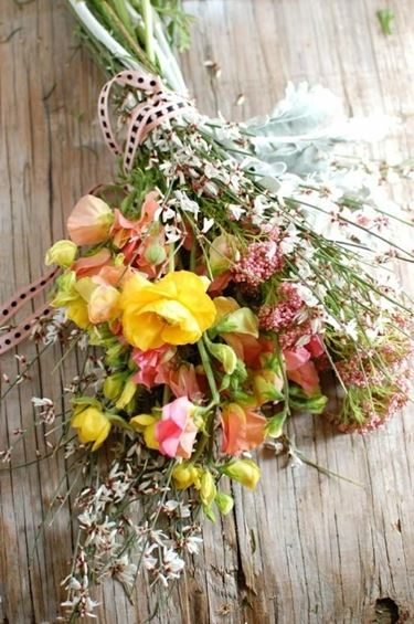 Freschi fiori di campo