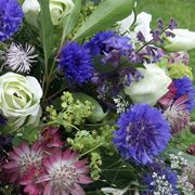 Miscuglio di fiori di giugno