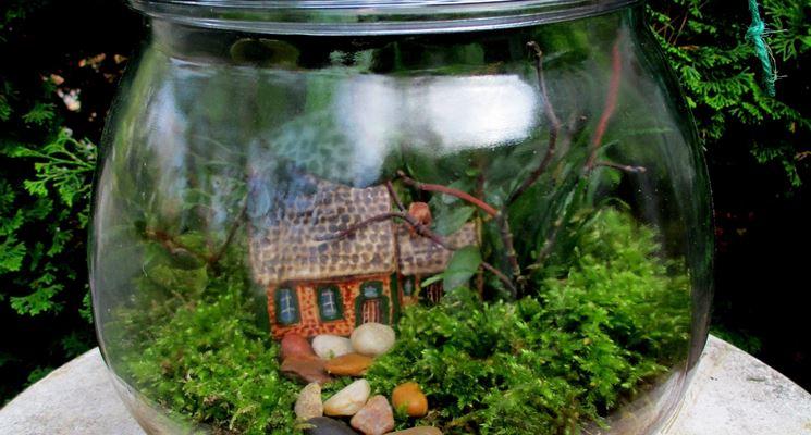 Giardino miniaturizzato