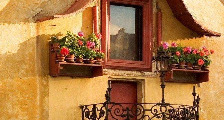 Dei bellissimi gerani su un balcone