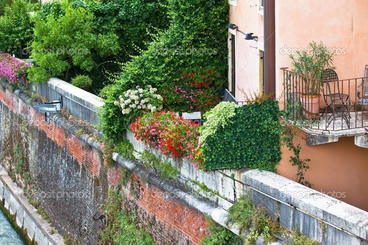 Un'altra bella immagine di fiori su un terrazzo